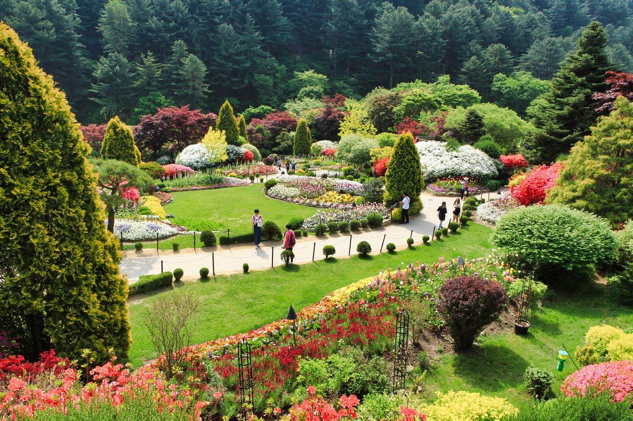 The Garden of Morning Calm (Gapyeong-gun) - 2020 All You Need to Know BEFORE You Go (with Photos) - Tripadvisor