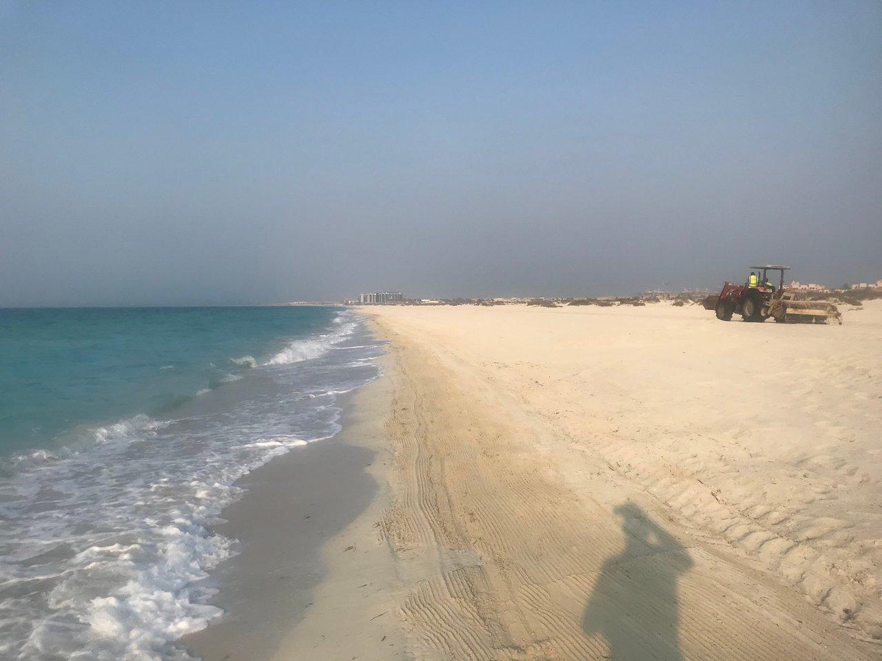 Saadiyat Public Beach Abu Dhabi 2019 All You Need To