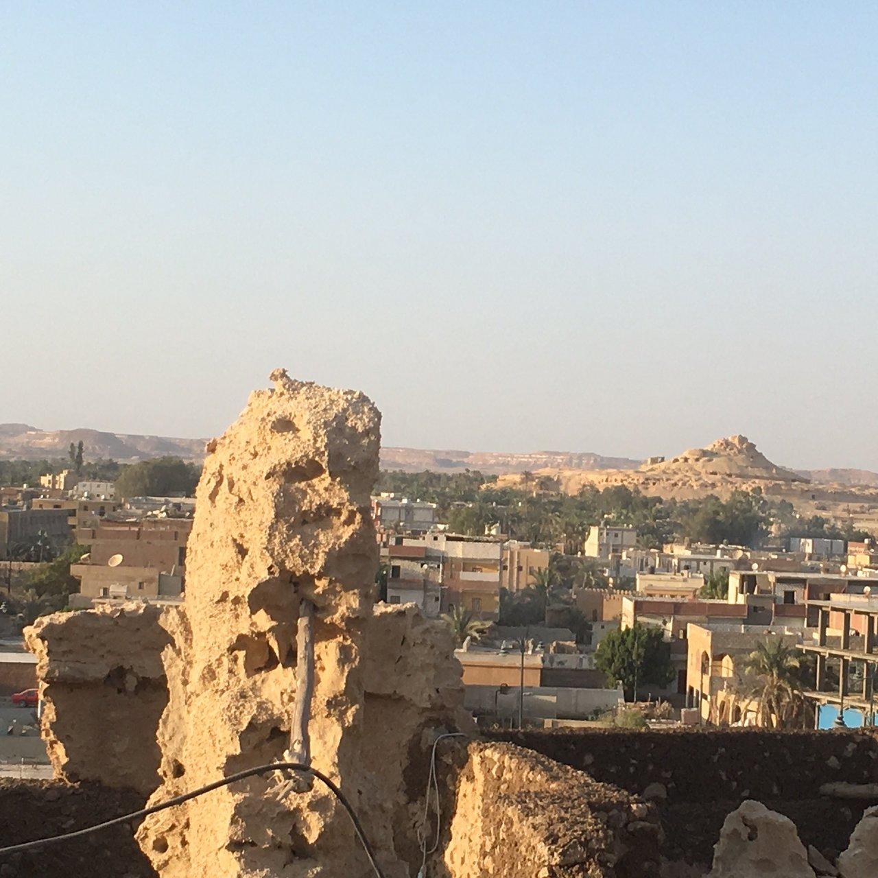 Adult Guide in Qasr Farafra
