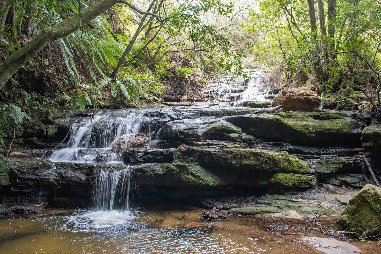 Leura Cascades: UPDATED 2020 All You Need to Know Before You Go ...
