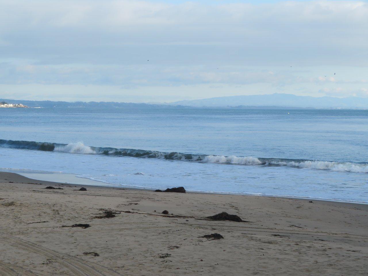 Santa Cruz Main Beach 2020 All You