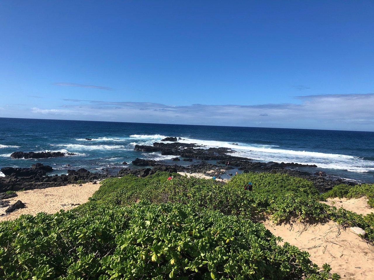 Hokua Beach Supply (Kapolei, HI) anmeldelser Tripadvisor