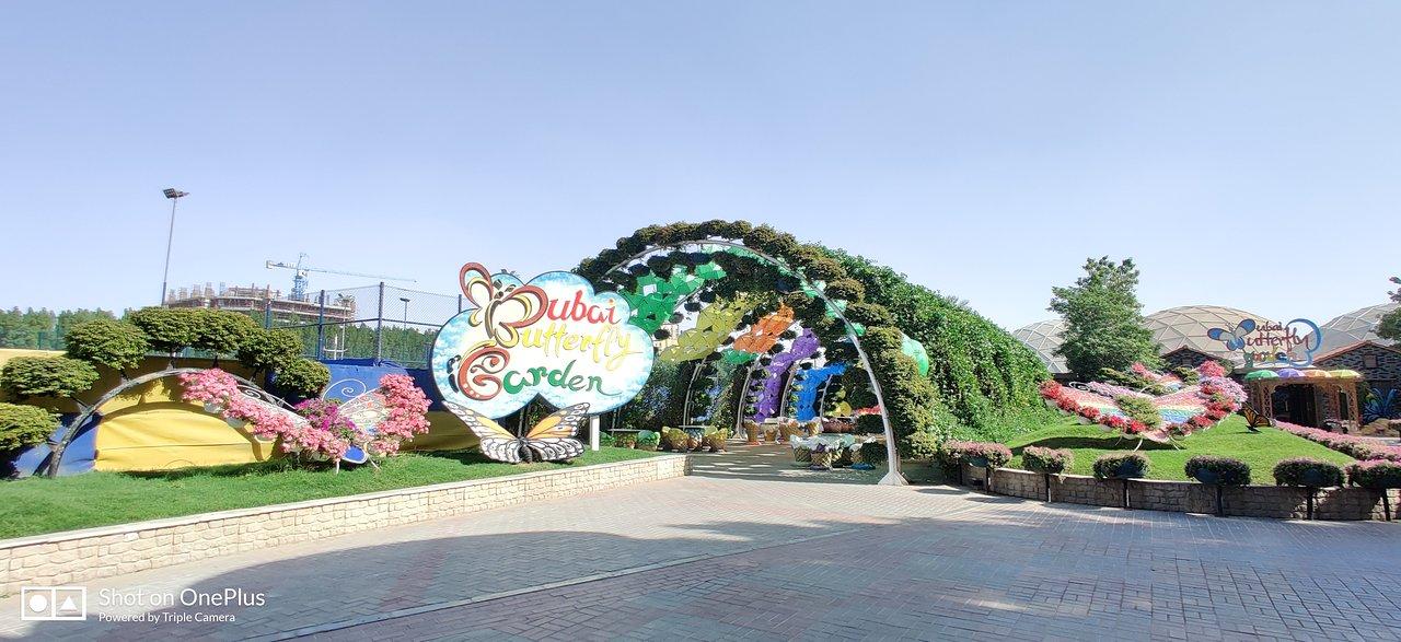 dubai összekapcsolják a helyeket a legsikeresebb online társkereső szolgáltatás