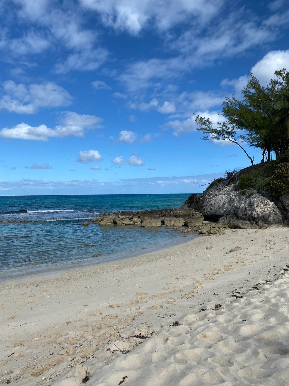 Blue Lagoon Island Nassau 2020 All You Need To Know