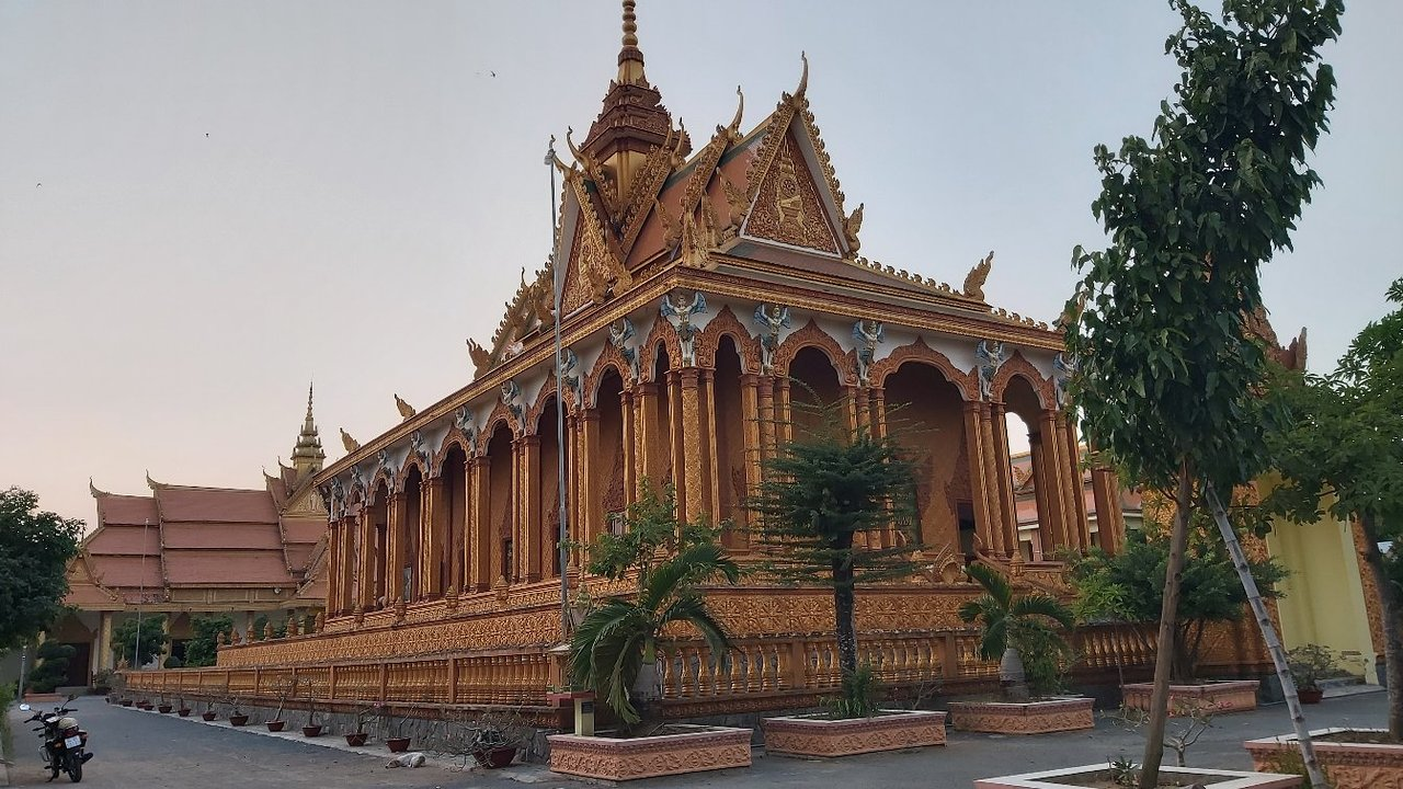 Adult Guide in Tra Vinh