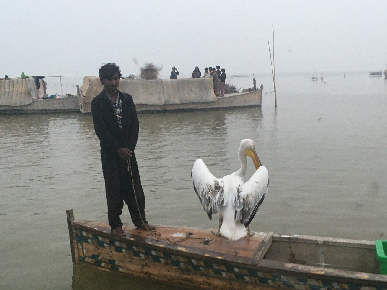 Manchar Lake (Sehwan) - 2021 All You Need to Know BEFORE You Go (with  Photos) - Tripadvisor