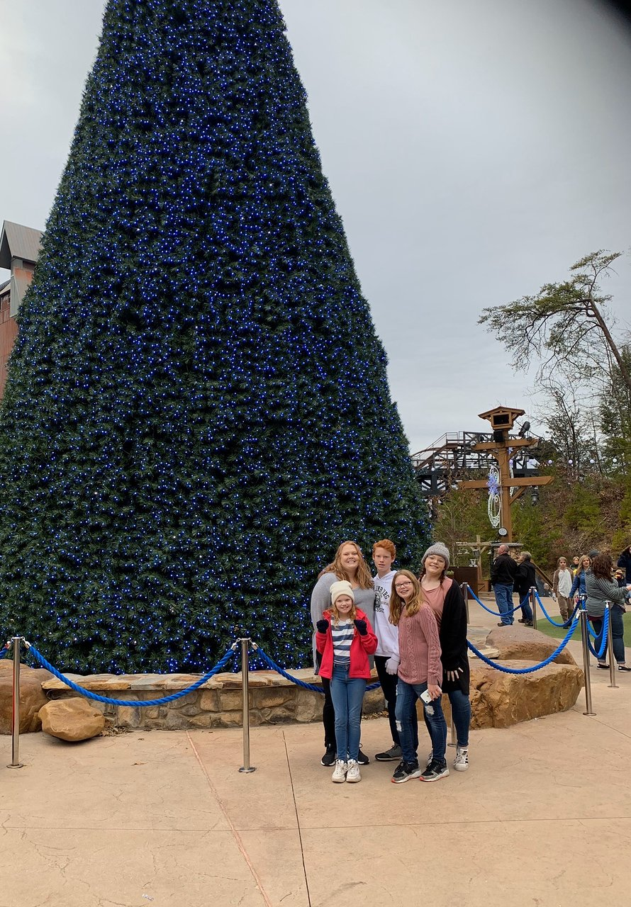 Dollywood (Pigeon Forge) - 2020 All You