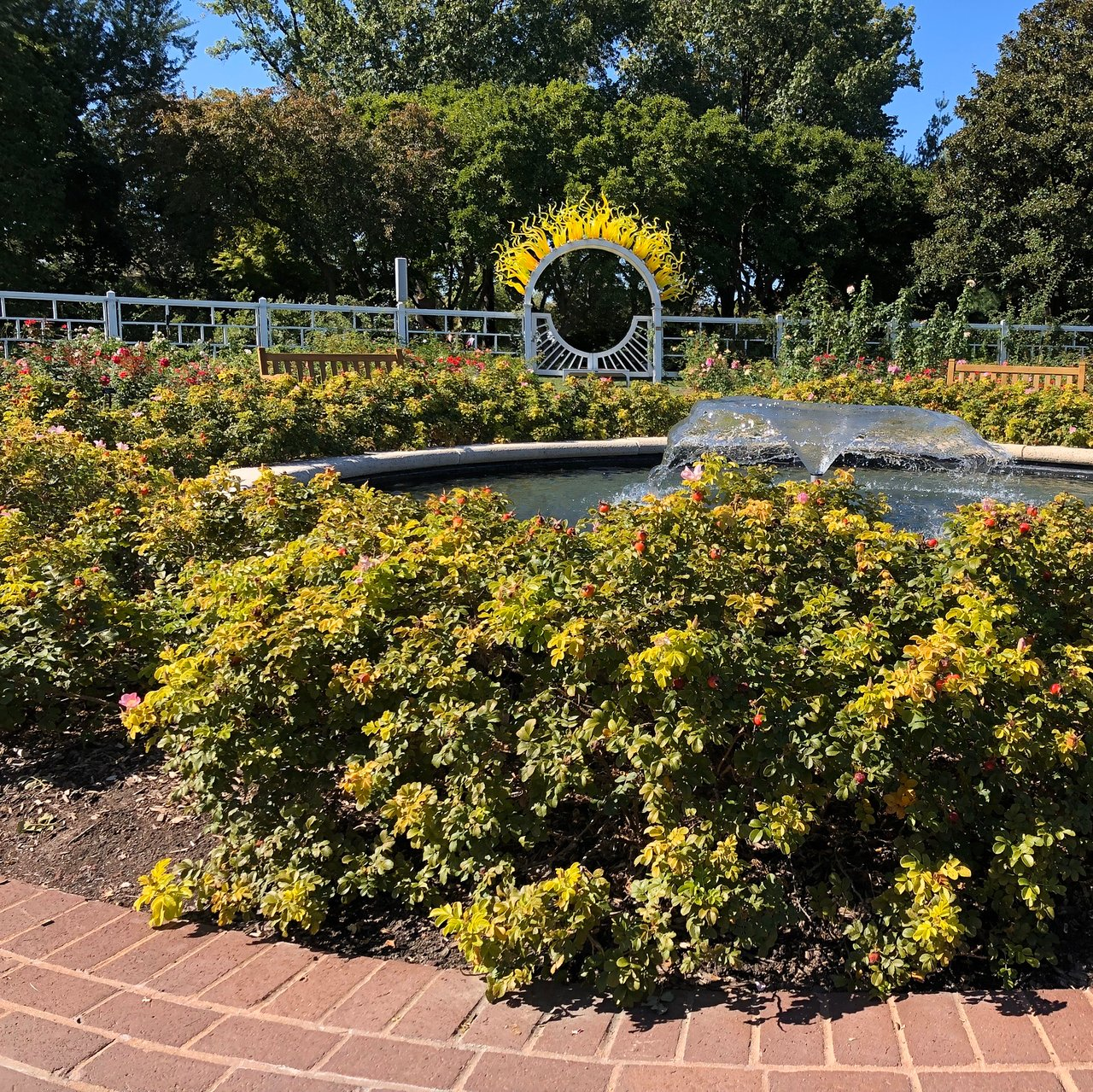 Missouri Botanical Garden Saint Louis 2020 All You Need To