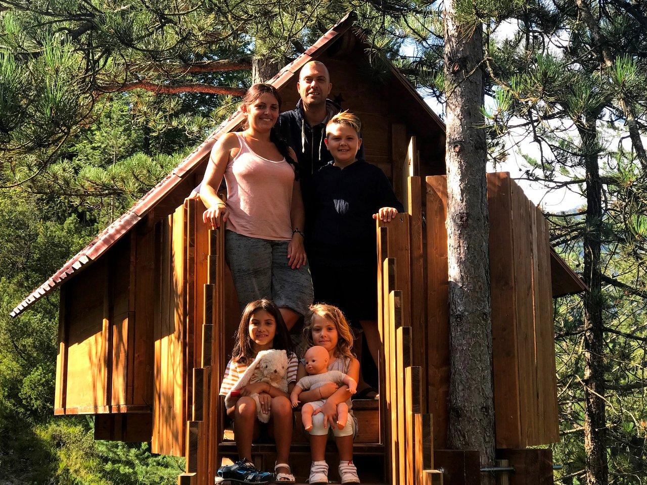 Casa Sull Albero Malga Priu Prezzi tree village (claut): aggiornato 2020 - tutto quello che c'è