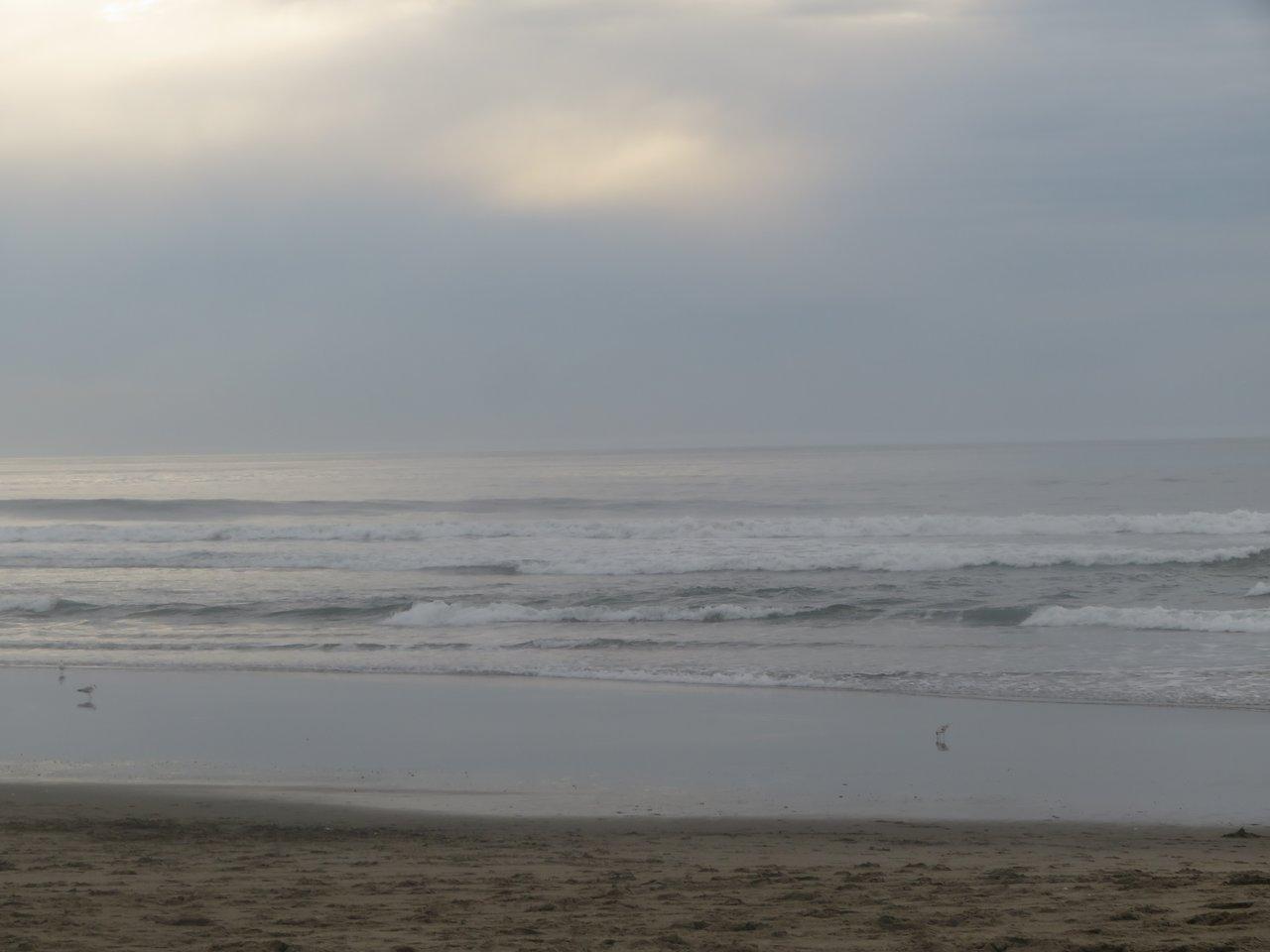 Sunset State Beach Watsonville 2020