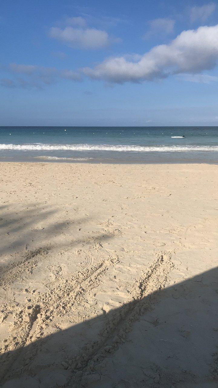 SANDALS NEGRIL BEACH RESORT & SPA Updated 2020 Prices