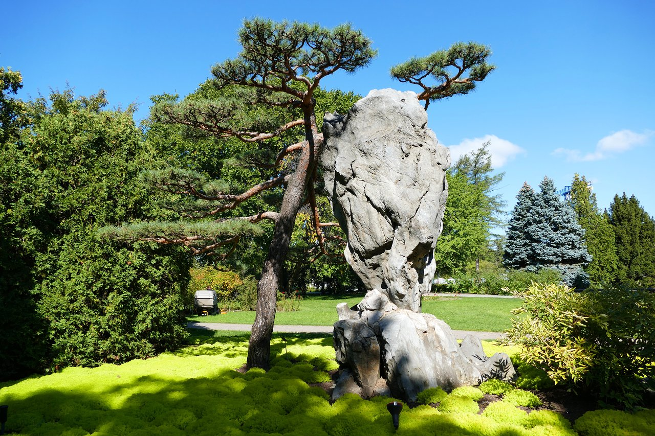 Montreal Botanical Garden All You Need To Know Before You Go