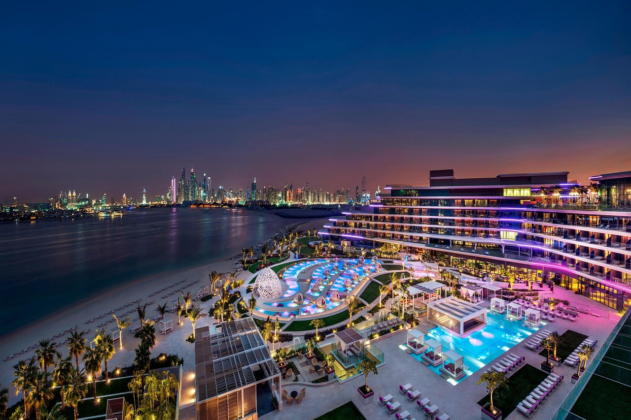 7 Pet Friendly Hotels In Dubai