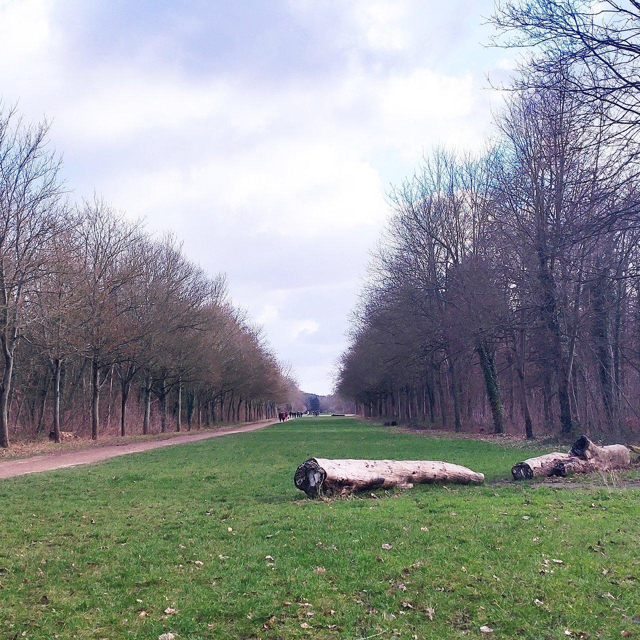 Δάσος του Βενσέν (Παρίσι, Γαλλία) - Κριτικές - Tripadvisor