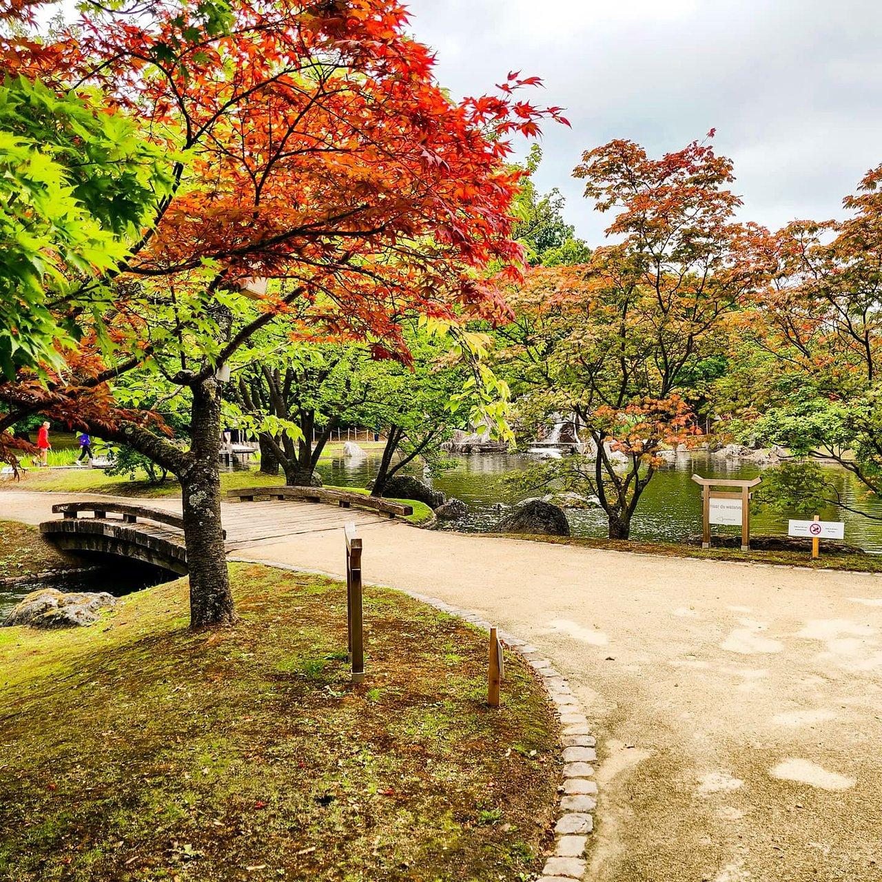 Japanese Tuin Hasselt Aktuelle 2020 Lohnt es sich