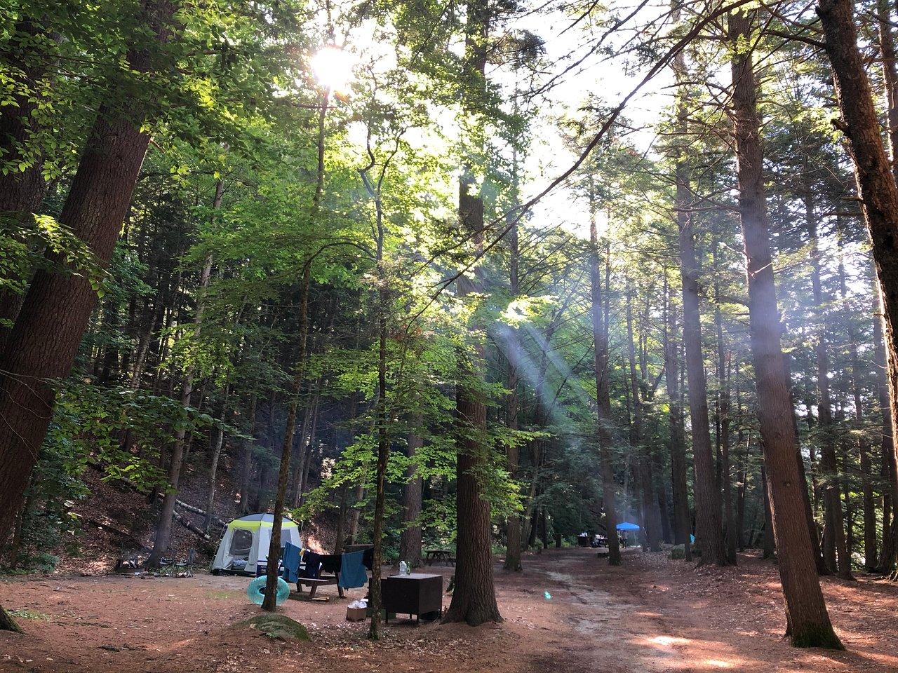 Cabin 20 fotografía de Mohawk Trail State Forest, Charlemont ...