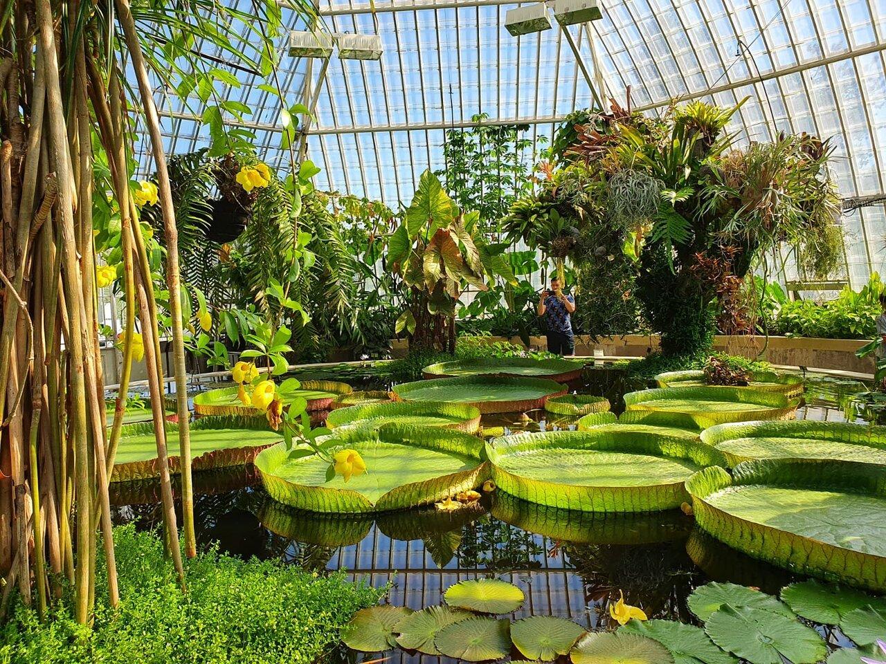 lily garden spa stockholm