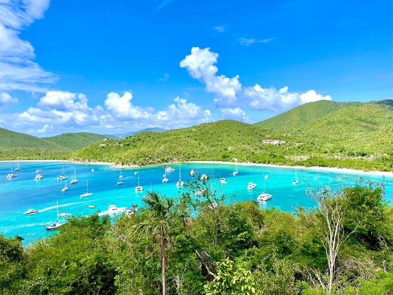 Maho Bay – Foto de IslandBuddy Tours, St. Thomas - Tripadvisor