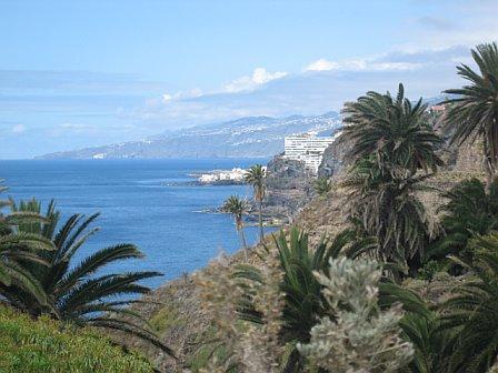 Ocean View - Rambla de Castro hike (16897337)