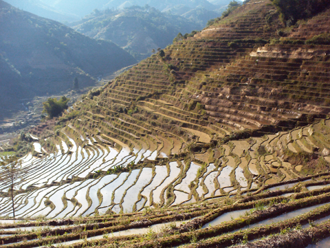 Things To Do in Tiger Leaping Gorge (Hutiao Xia), Restaurants in Tiger Leaping Gorge (Hutiao Xia)