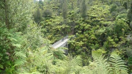 Puente a Ningún Lado