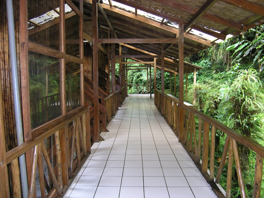 Manu Cloud Forest Lodge