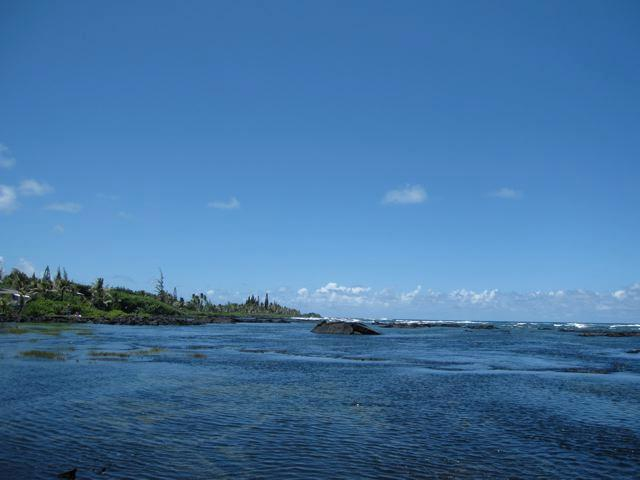 ハワイ パラダイス スイート