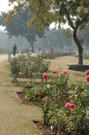 ‪Chandigarh Rose Garden‬