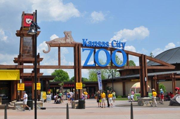 Kansas City Zoo Mo Top Tips Before You Go With Photos