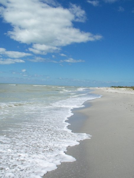 Bowman S Beach Sanibel Island 2018 All You Need To Know Before Go With Photos Tripadvisor