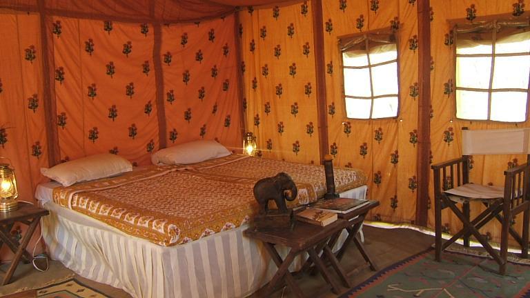 Jungle Camp ranakpur