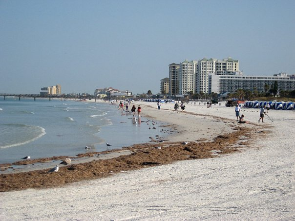 Clearview Florida Map.The Top 10 Things To Do Near Clearwater Beach Tripadvisor