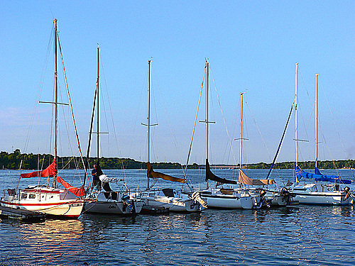 Sailboats on Lake Decatur Pic 5
