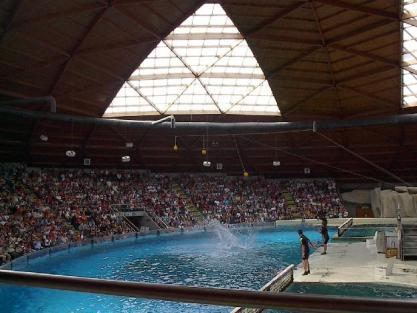Boudewijn Theme Park and Dolfinarium