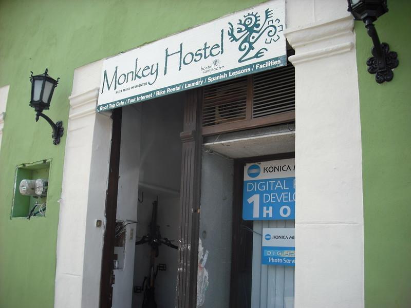 Monkey Hostel