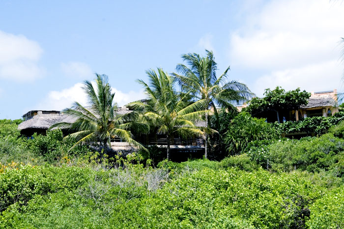 Wildfitness - Baraka House