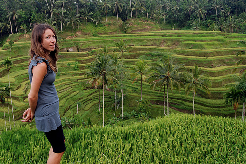 Bali Full day tour-Wendy tour