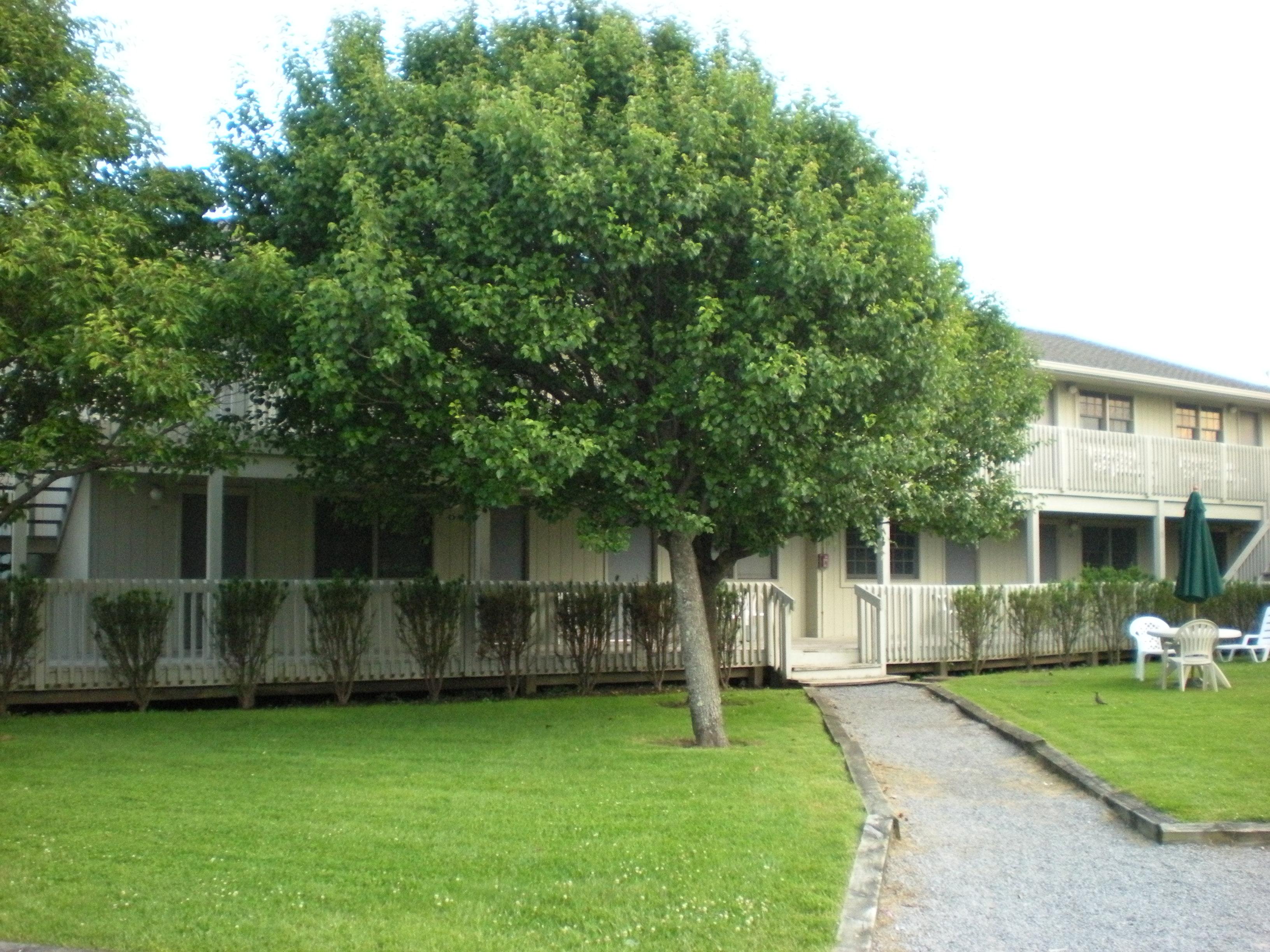 Culloden House Motel