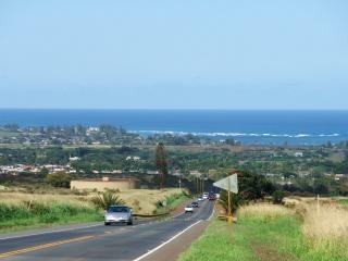 Kamehameha Highway