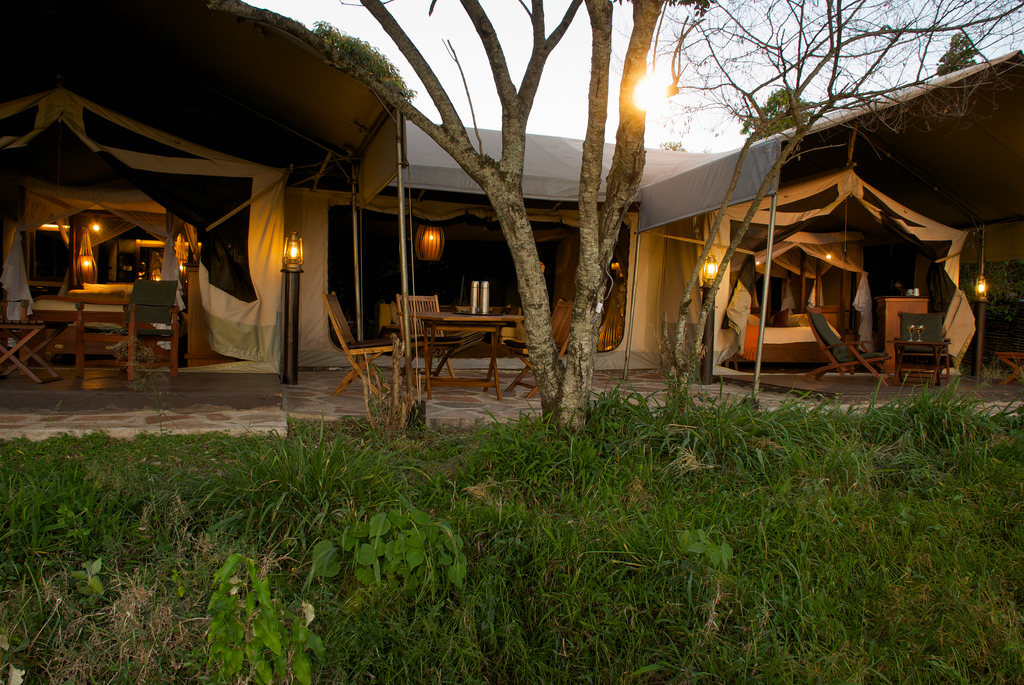 Mara Intrepids Luxury Tented Camp