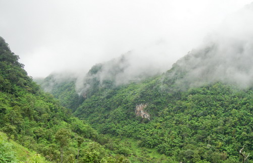 1Day Trekking & Kayan - CM Lanna Tour