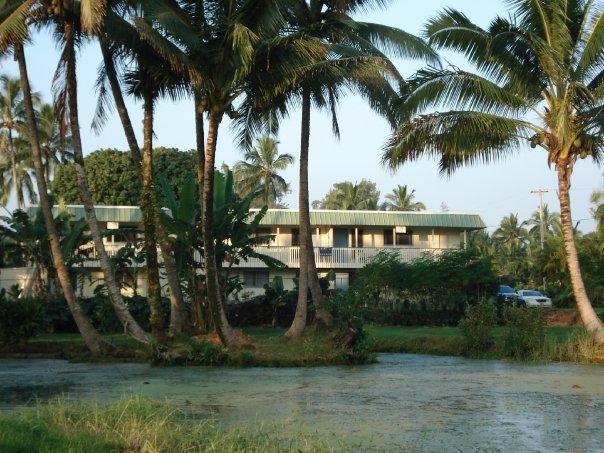Arnott's Lodge