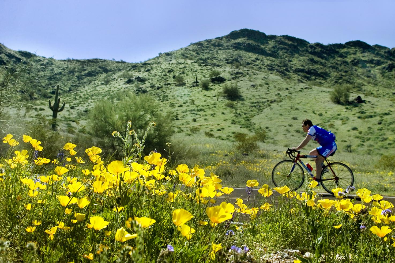 Biking at South Mountain