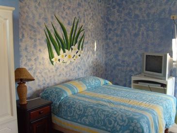 Hotel Miconia
