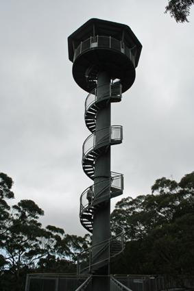 Illawarra Fly Treetop Walk