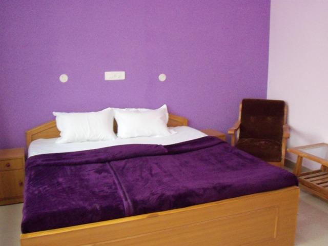 Hotel Narmada Palace
