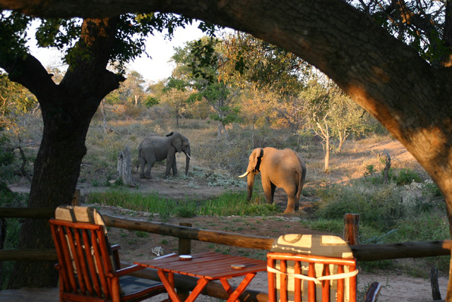 Amukela Game Lodge