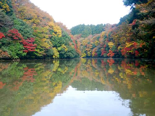 Kameyama Lake