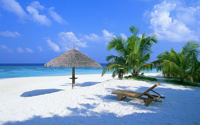 The 10 Best Restaurants Near Wailoaloa Beach Resort Fiji - TripAdvisor