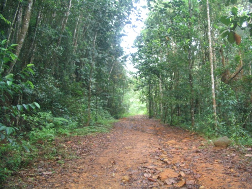 Sinharaja Forest Reserve